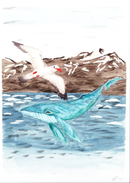 Gull & Leviathan